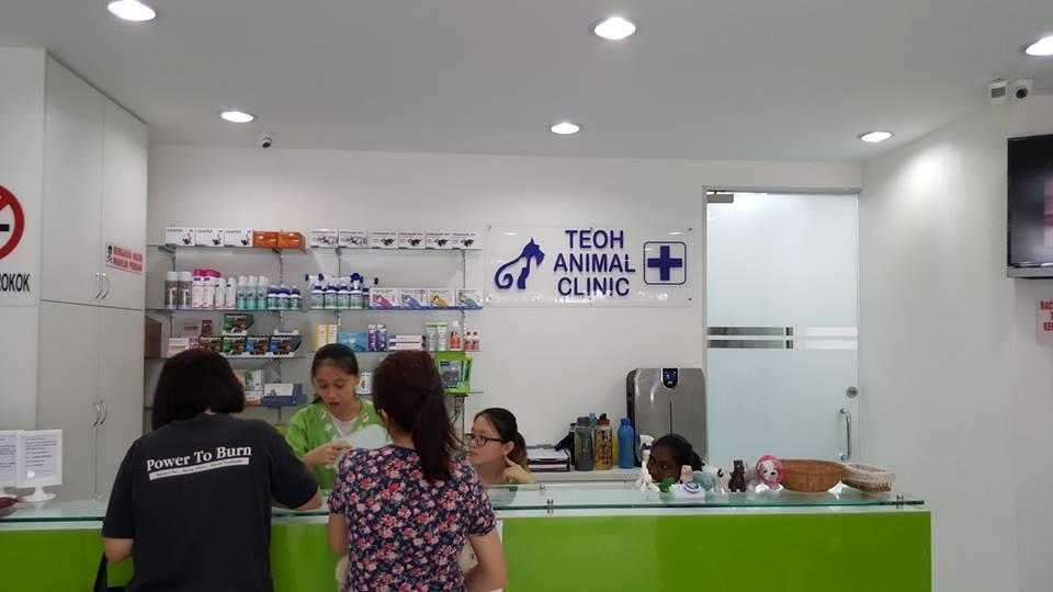 Teoh Animal Clinic